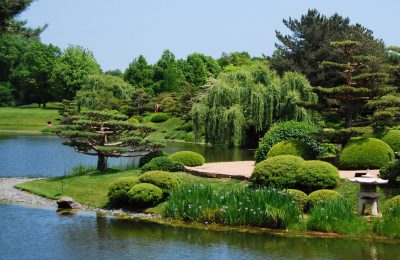 The Beauty of the Chicago Botanic Garden