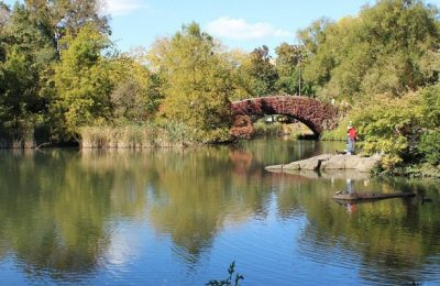 Top 5 Family Friendly Activities in New York